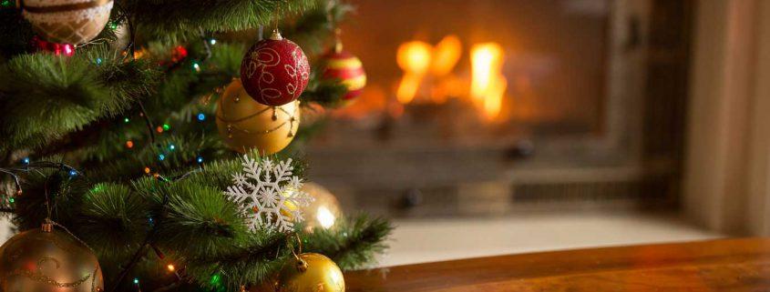 O Christmas Tree Taking Care Of Your Christmas Trees